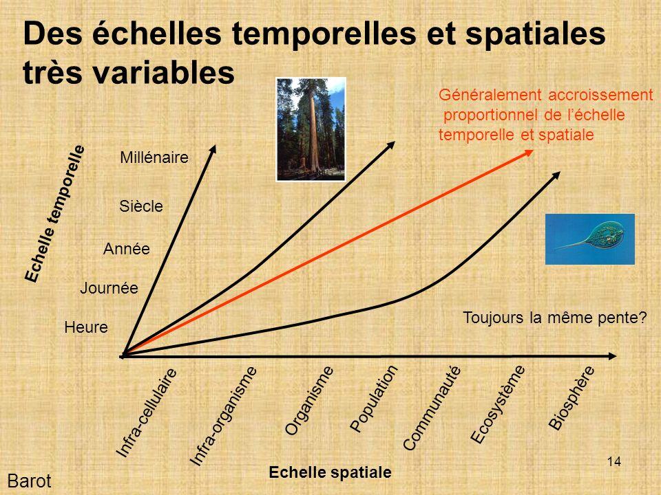 Des échelles temporelles et spatiales très variables