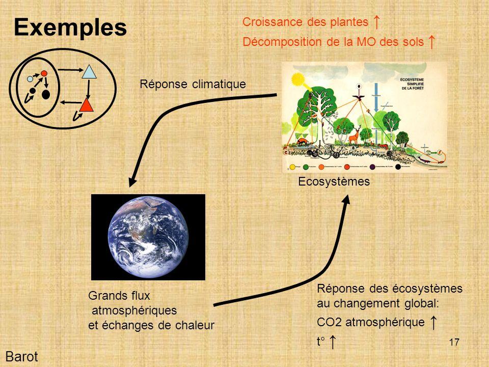 Exemples Barot Croissance des plantes ↑
