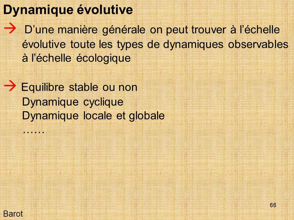 Dynamique évolutive