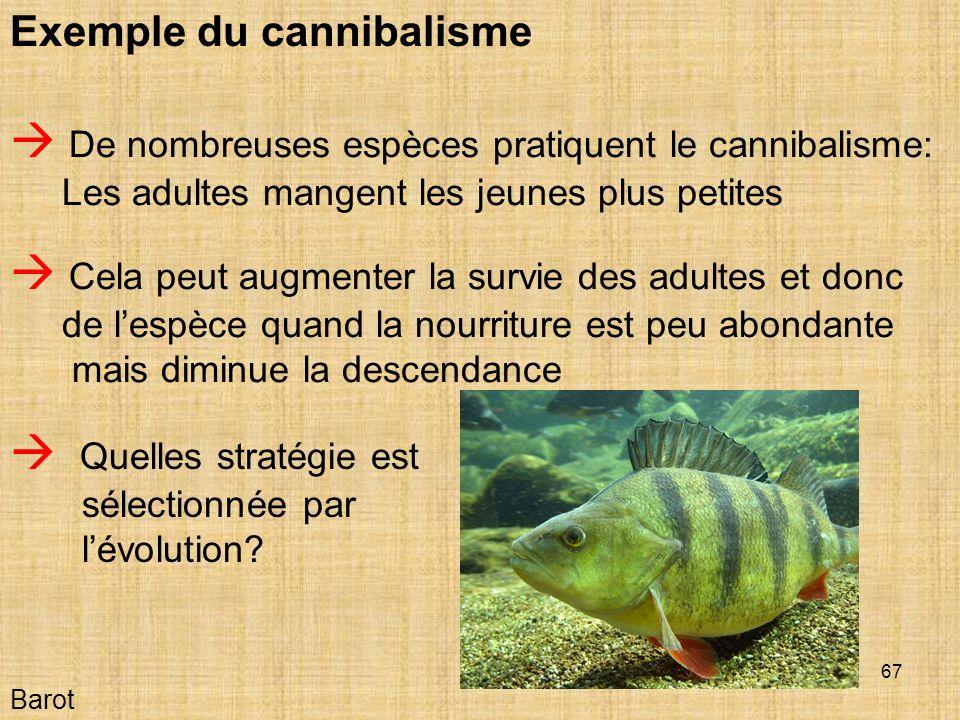  Quelles stratégie est sélectionnée par l'évolution