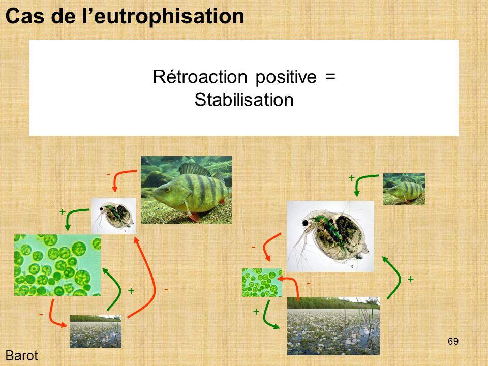Rétroaction positive =