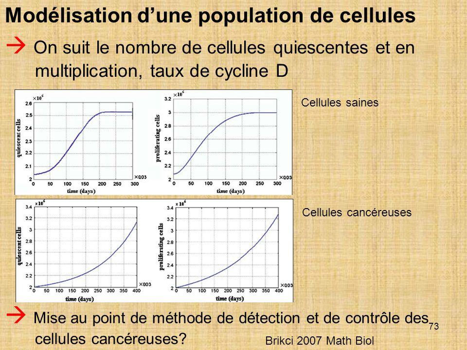 Modélisation d'une population de cellules
