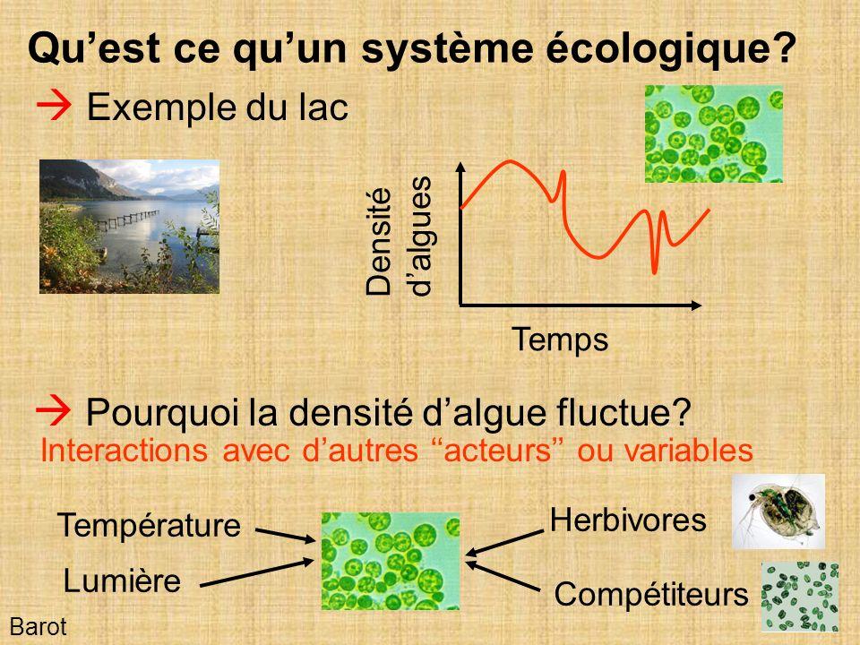 Qu'est ce qu'un système écologique  Exemple du lac