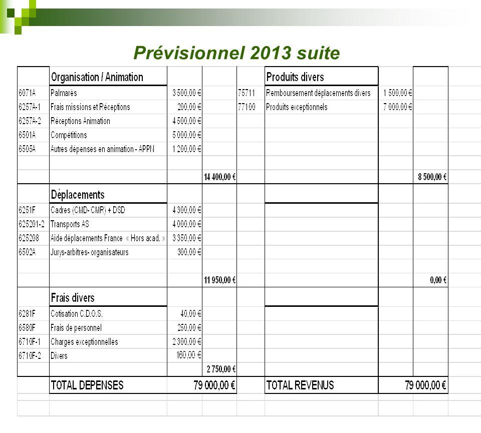 Prévisionnel 2013 suite
