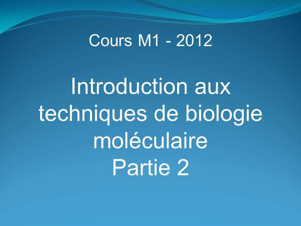 Introduction aux techniques de biologie moléculaire