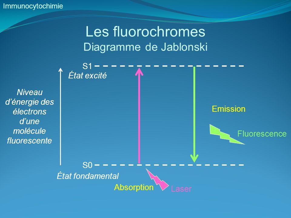 Les fluorochromes Diagramme de Jablonski S1 État excité