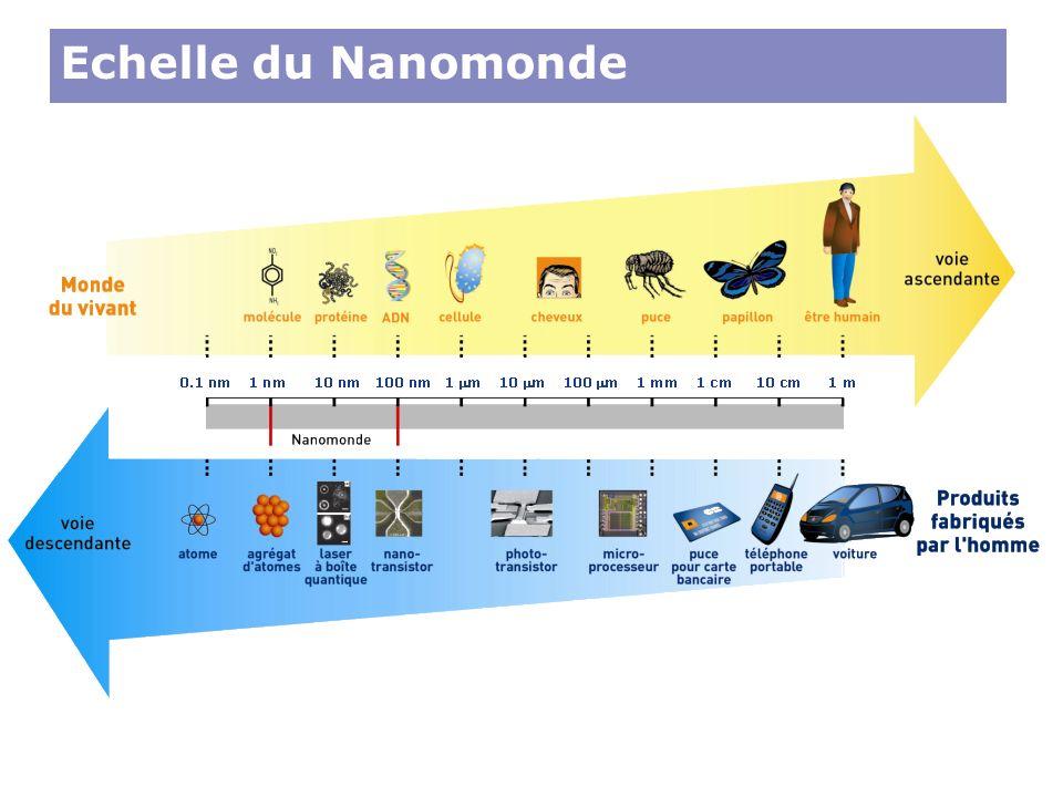 Echelle du Nanomonde