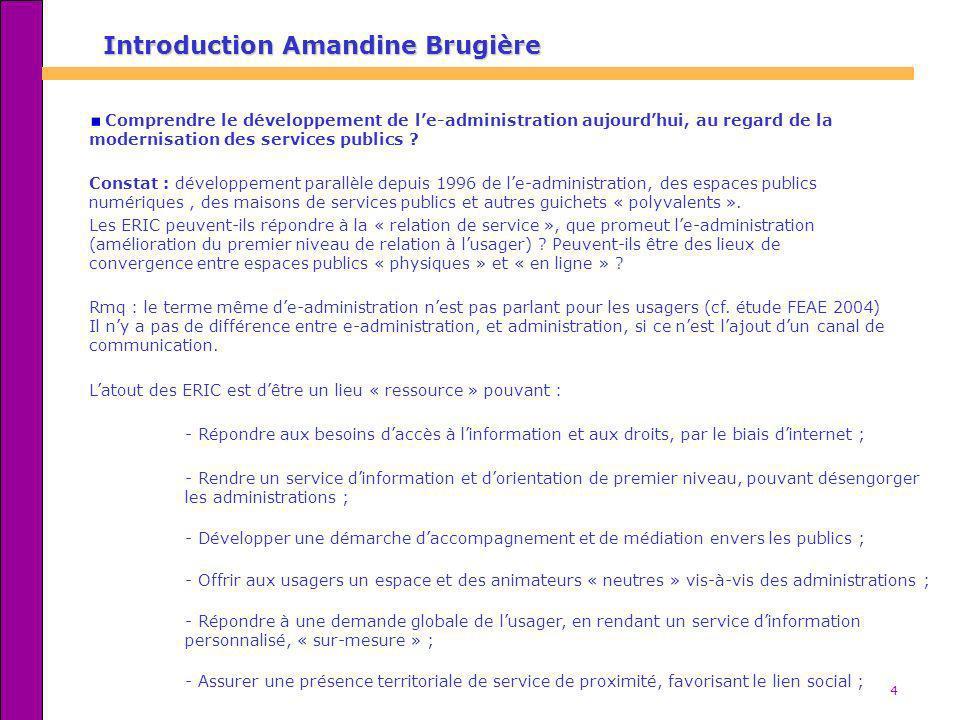 Introduction Amandine Brugière