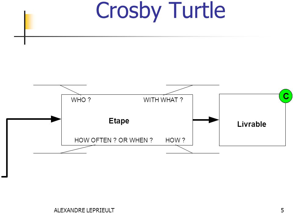 Crosby Turtle C Etape Livrable WHO WITH WHAT HOW OFTEN OR WHEN