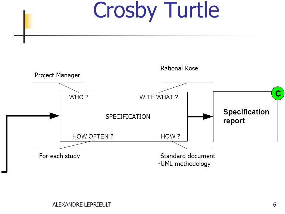 Crosby Turtle C Specification report Rational Rose Project Manager