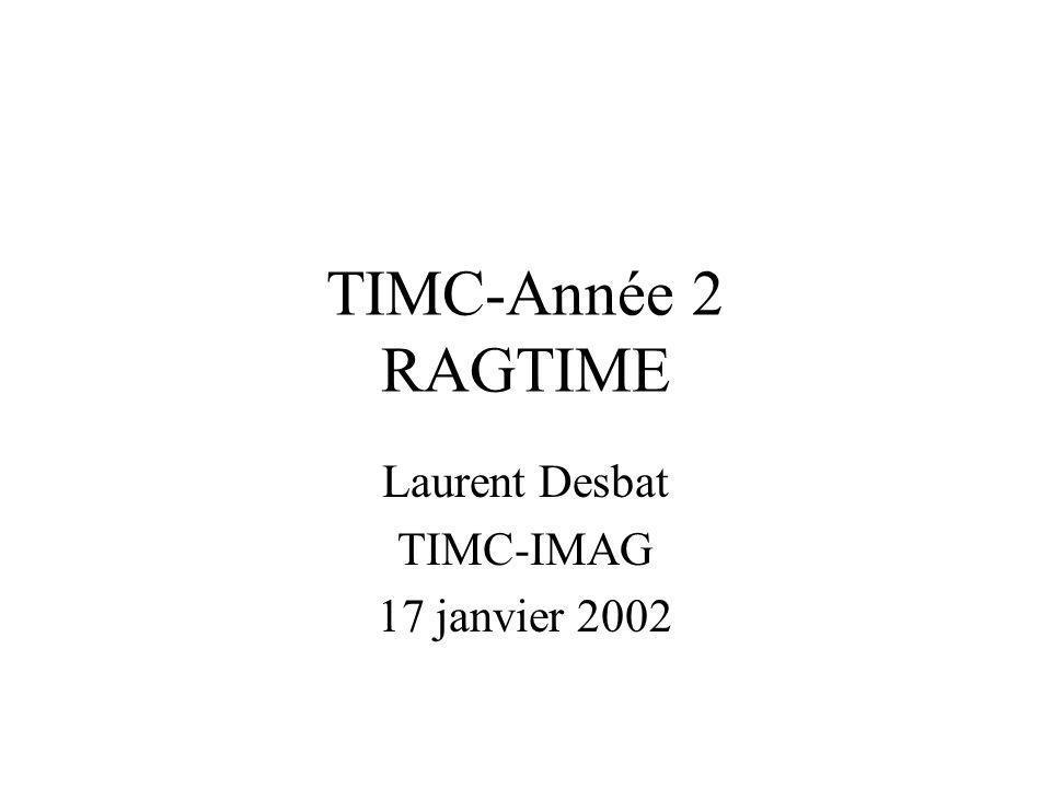 Laurent Desbat TIMC-IMAG 17 janvier 2002