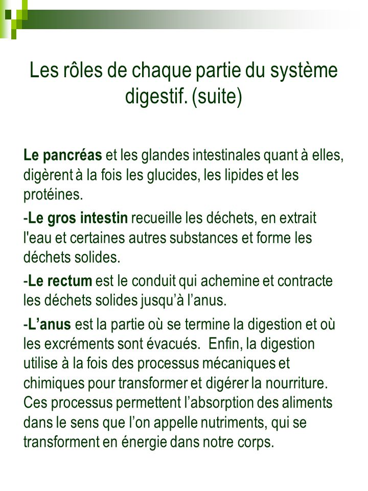 Les rôles de chaque partie du système digestif. (suite)