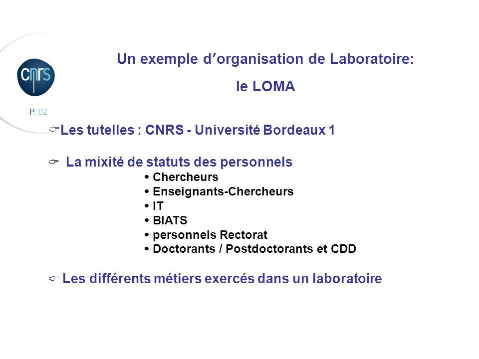 Un exemple d'organisation de Laboratoire: