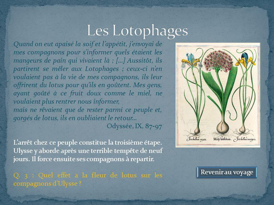 Les Lotophages