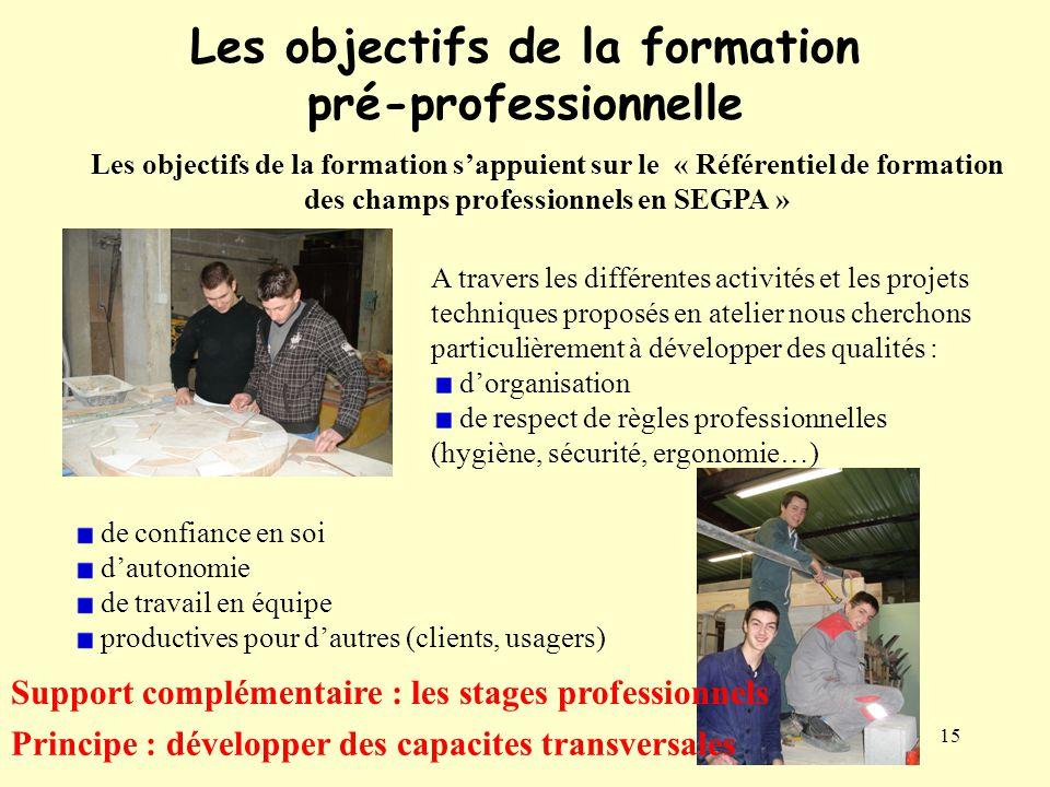 Les objectifs de la formation pré-professionnelle