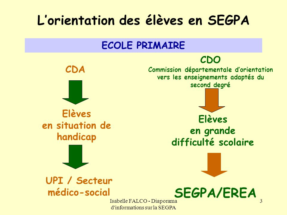 L'orientation des élèves en SEGPA