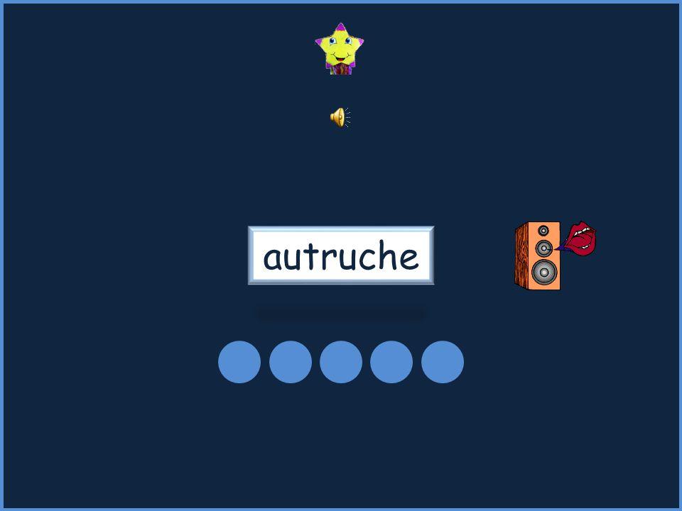 autruche