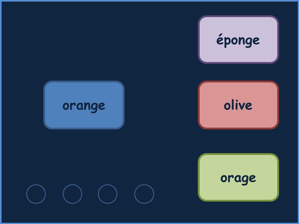 éponge orange olive orage
