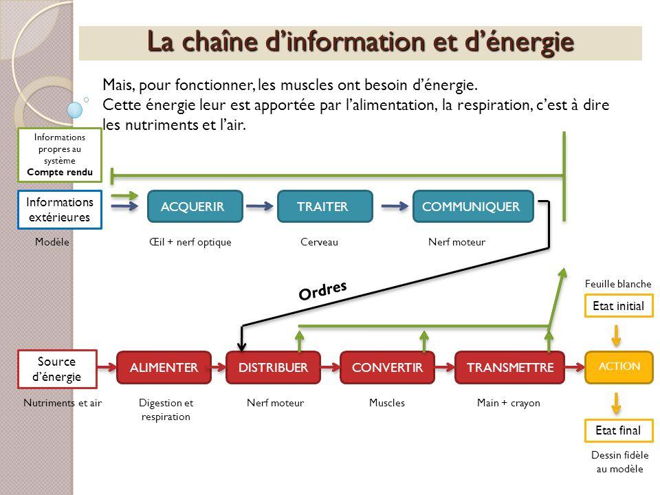 La chaîne d'information et d'énergie