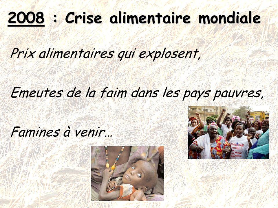 2008 : Crise alimentaire mondiale