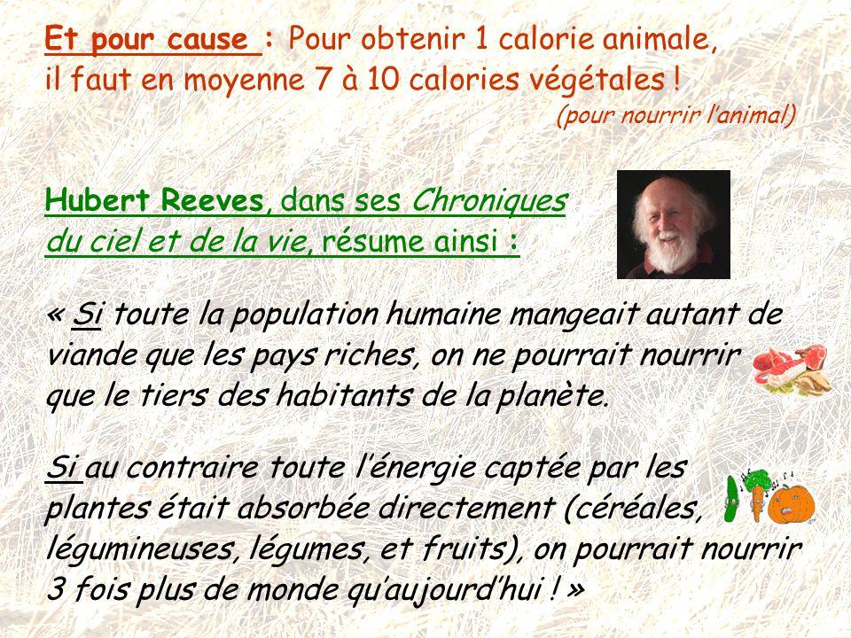 Et pour cause : Pour obtenir 1 calorie animale, il faut en moyenne 7 à 10 calories végétales ! (pour nourrir l'animal)