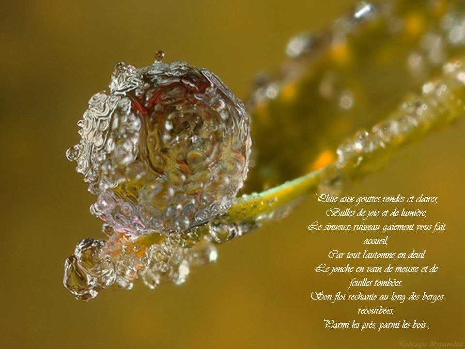 Pluie aux gouttes rondes et claires, Bulles de joie et de lumière,