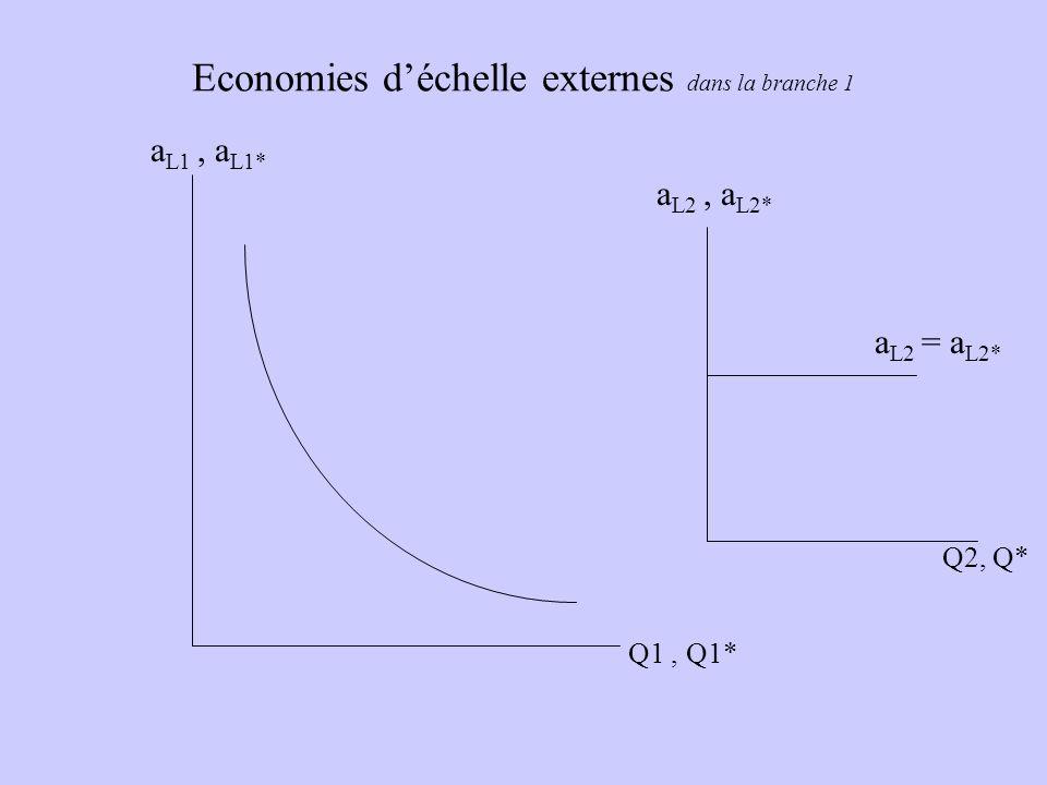 Economies d'échelle externes dans la branche 1