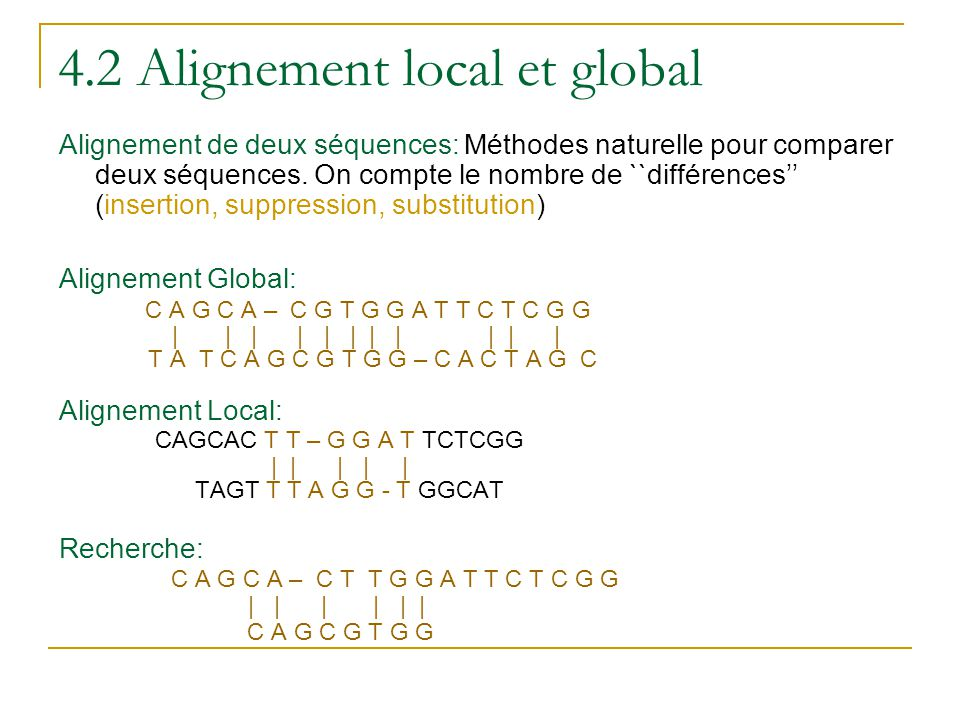 4.2 Alignement local et global