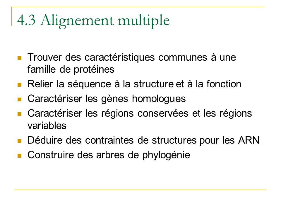 4.3 Alignement multiple Trouver des caractéristiques communes à une famille de protéines. Relier la séquence à la structure et à la fonction.