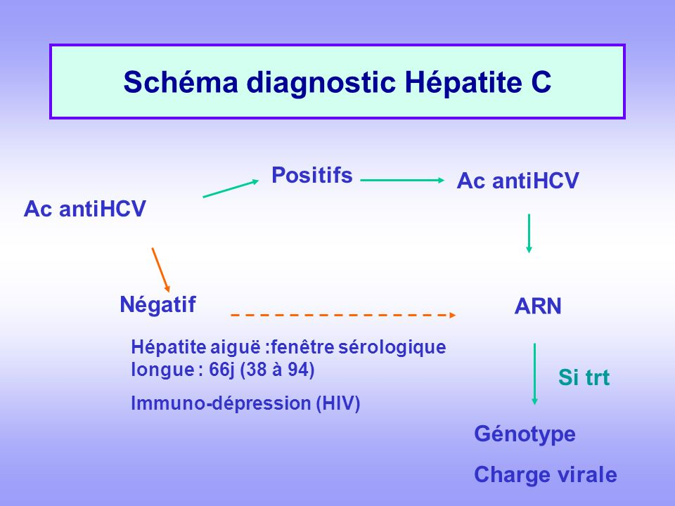 Schéma diagnostic Hépatite C