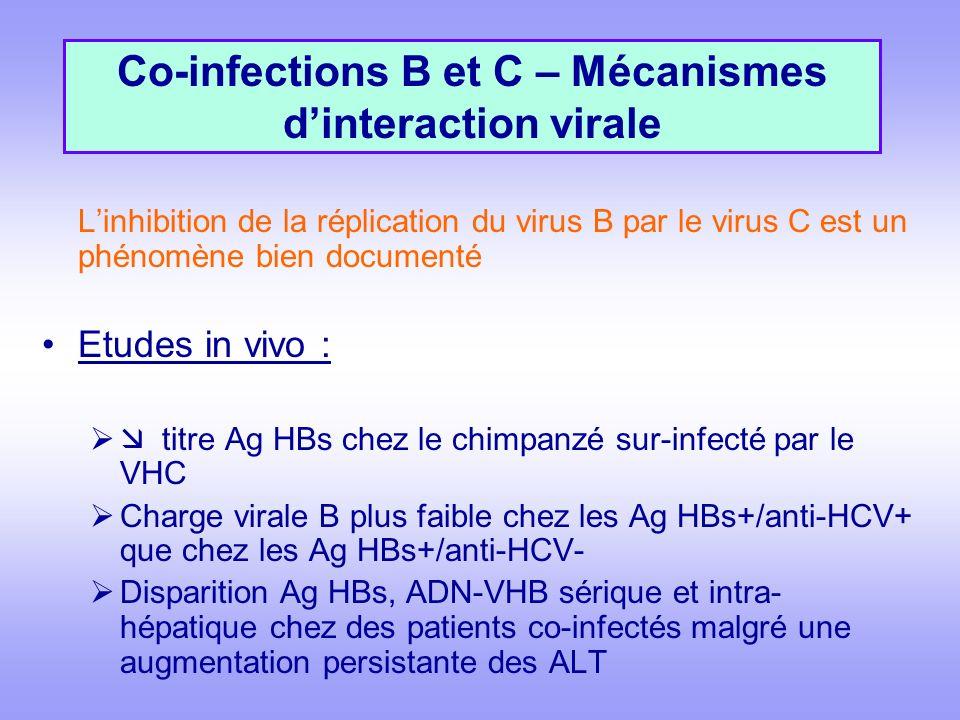 Co-infections B et C – Mécanismes d'interaction virale