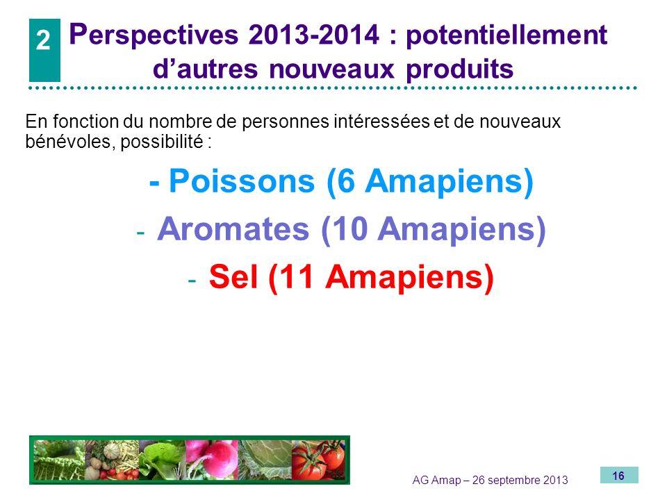 Perspectives 2013-2014 : potentiellement d'autres nouveaux produits