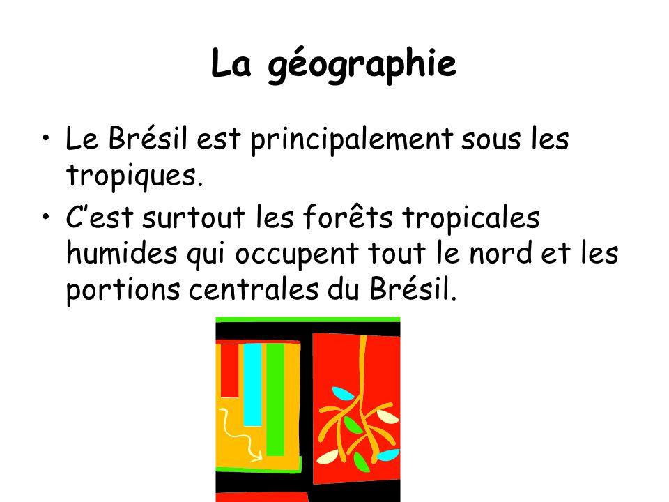 La géographie Le Brésil est principalement sous les tropiques.