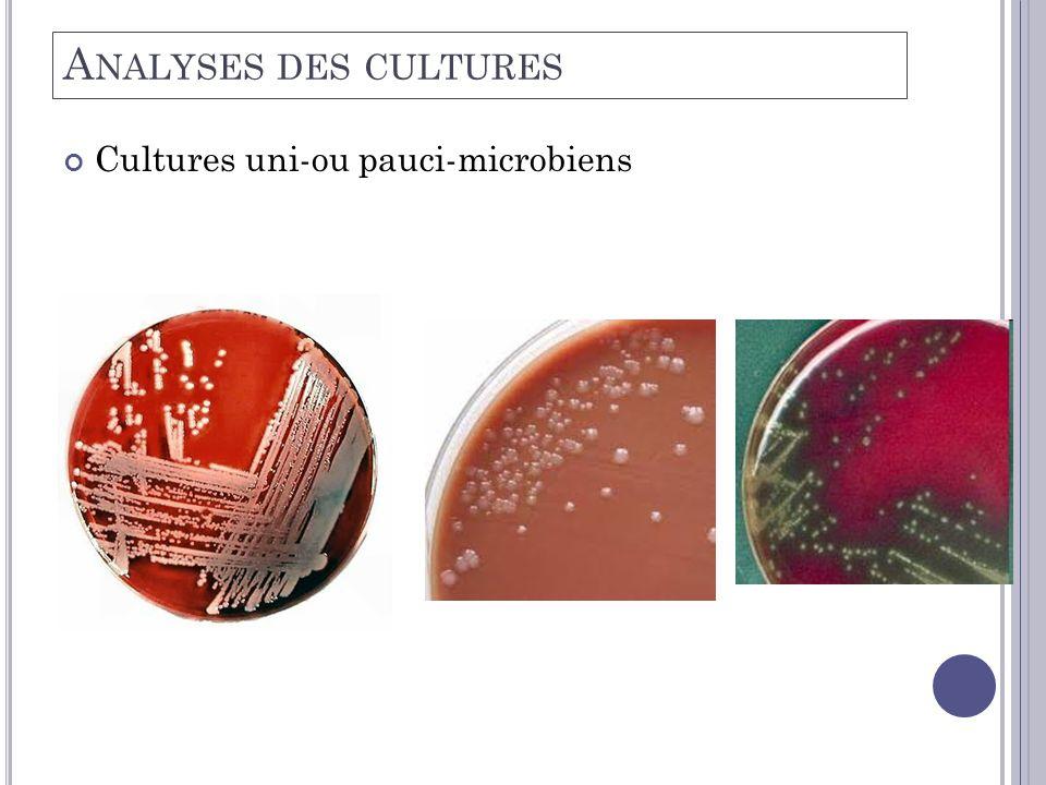 Analyses des cultures Cultures uni-ou pauci-microbiens