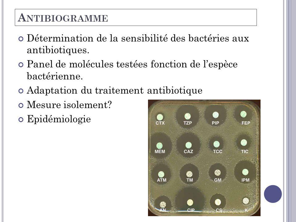 Antibiogramme Détermination de la sensibilité des bactéries aux antibiotiques. Panel de molécules testées fonction de l'espèce bactérienne.