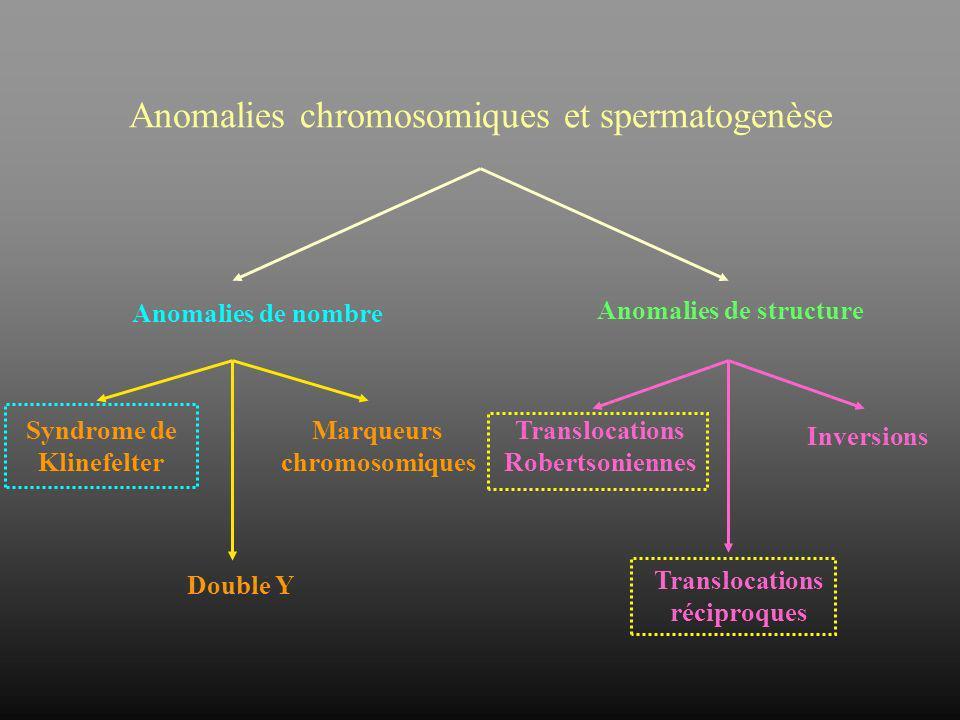 Anomalies de structure