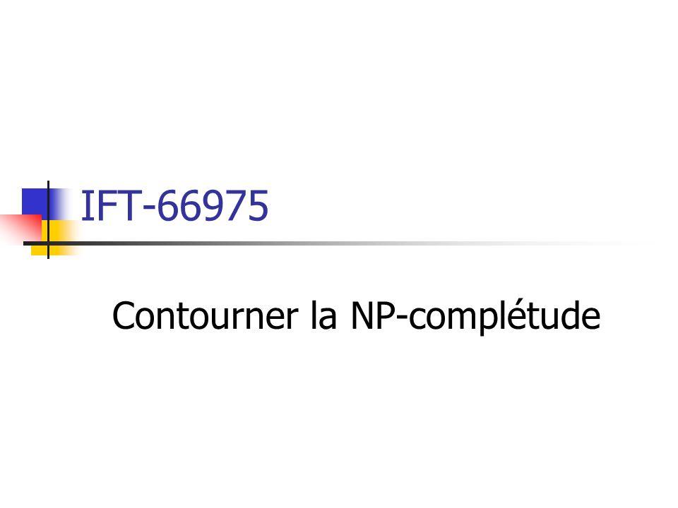 Contourner la NP-complétude