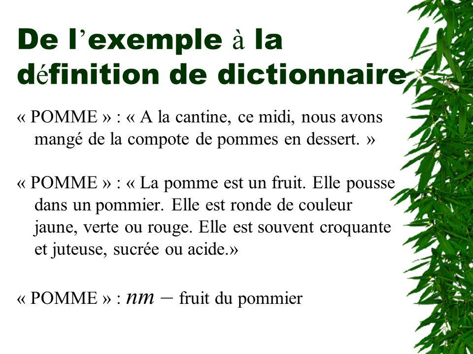 De l'exemple à la définition de dictionnaire