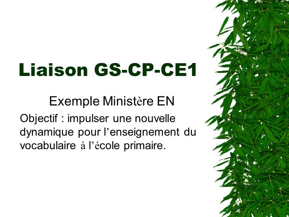 Liaison GS-CP-CE1 Exemple Ministère EN