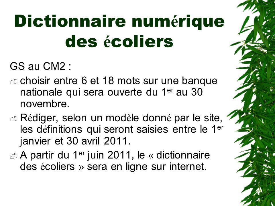 Dictionnaire numérique des écoliers