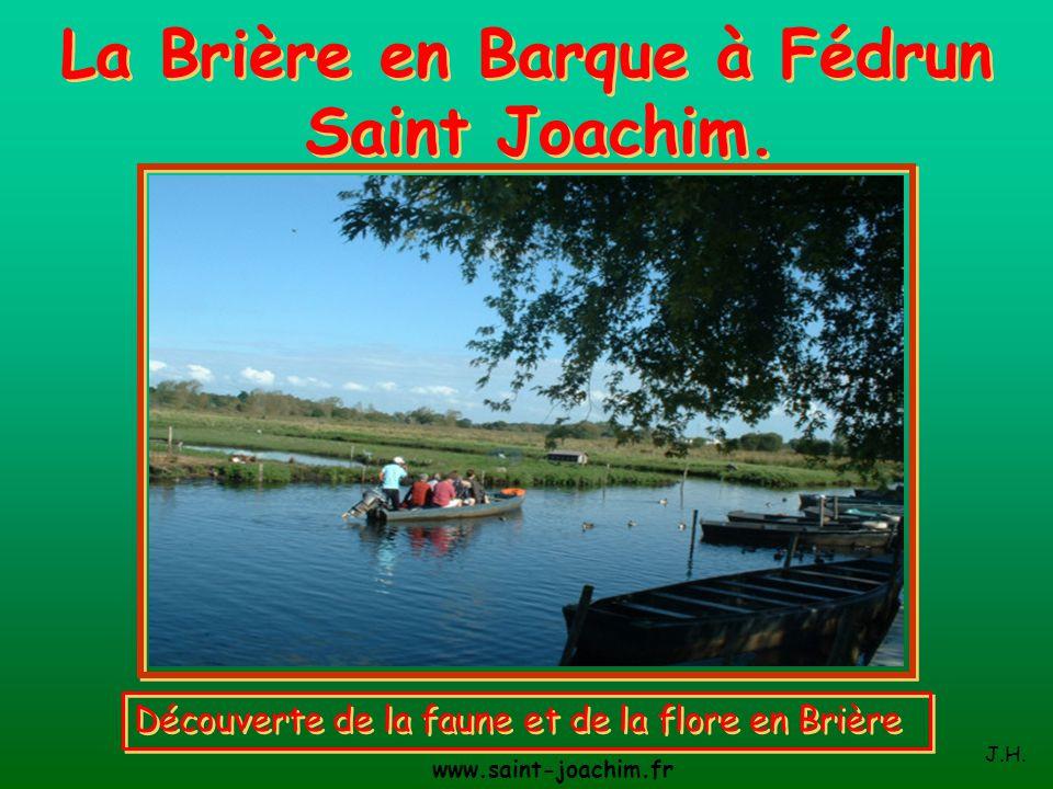 La Brière en Barque à Fédrun Saint Joachim.