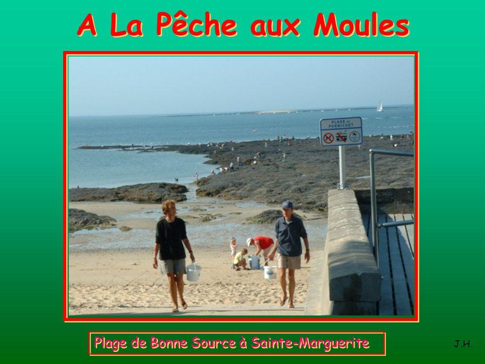 A La Pêche aux Moules Plage de Bonne Source à Sainte-Marguerite J.H.