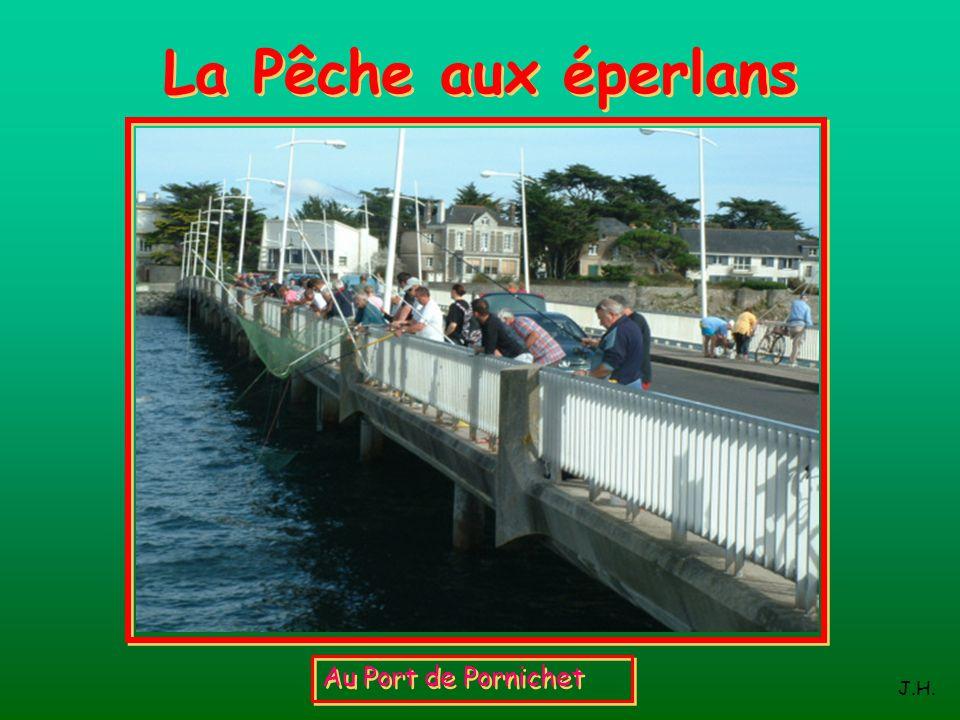 La Pêche aux éperlans Au Port de Pornichet J.H.