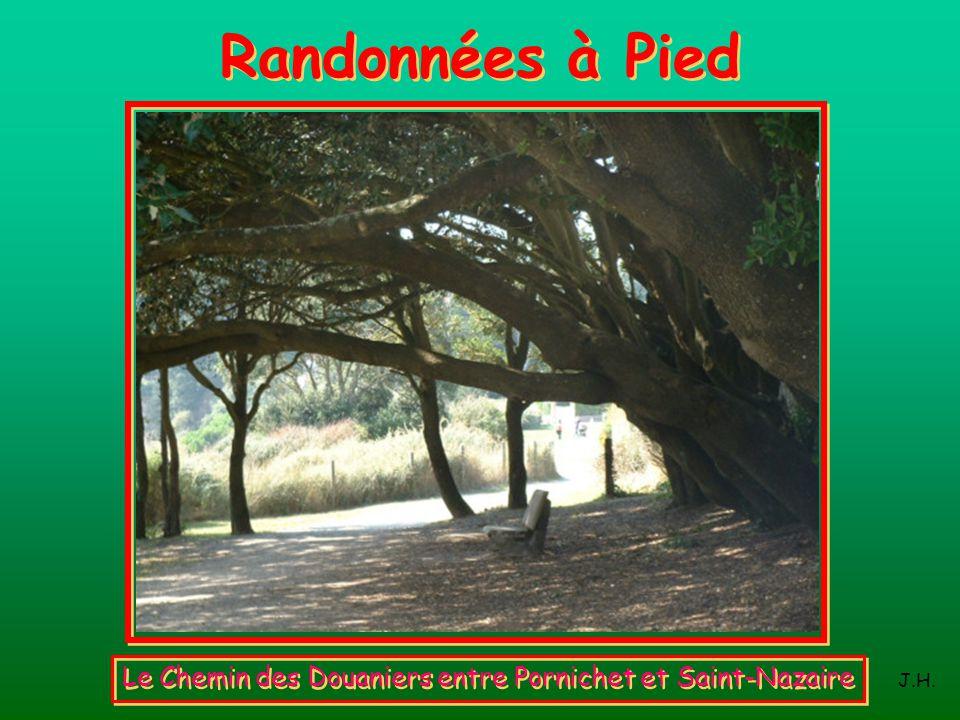 Randonnées à Pied Le Chemin des Douaniers entre Pornichet et Saint-Nazaire J.H.