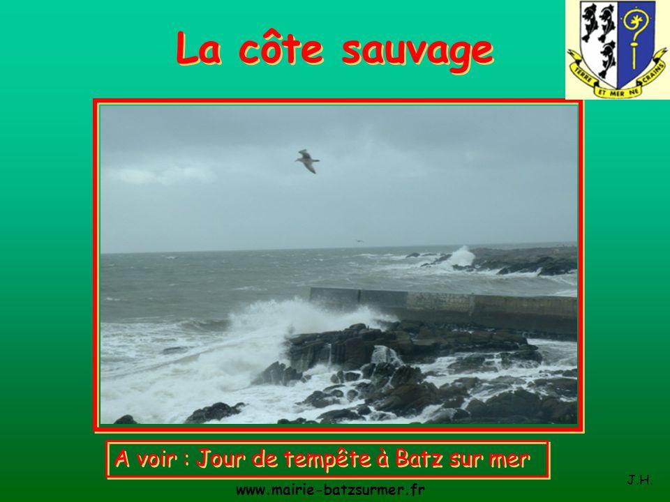 La côte sauvage A voir : Jour de tempête à Batz sur mer