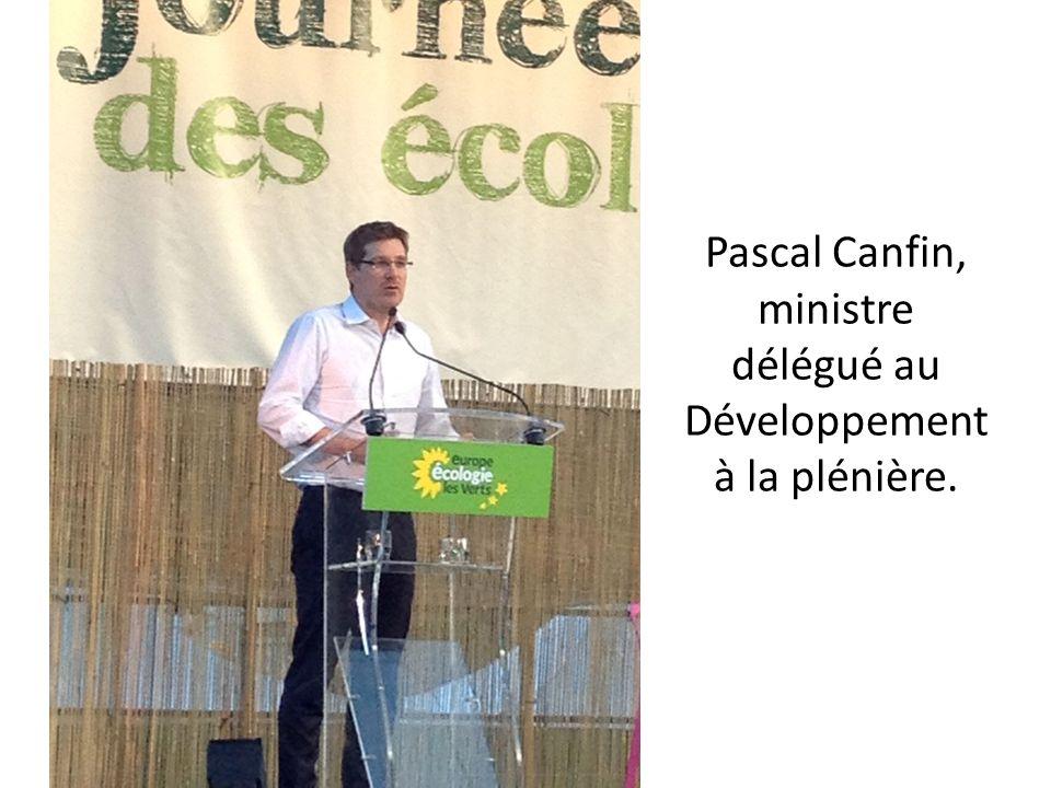 Pascal Canfin, ministre délégué au Développement à la plénière.