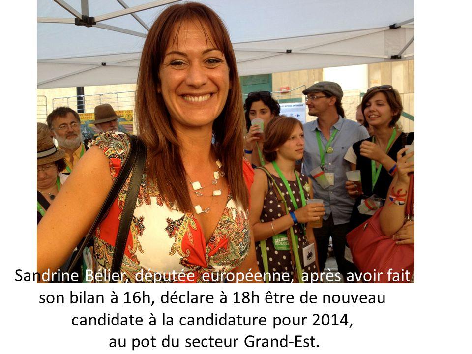 Sandrine Bélier, députée européenne, après avoir fait son bilan à 16h, déclare à 18h être de nouveau candidate à la candidature pour 2014, au pot du secteur Grand-Est.