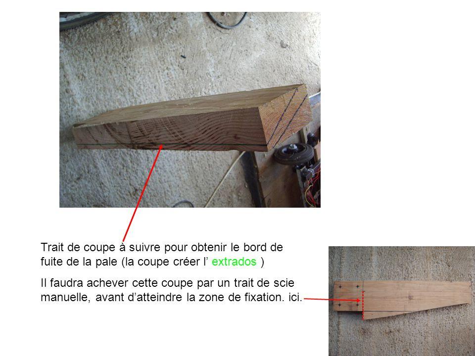 Trait de coupe à suivre pour obtenir le bord de fuite de la pale (la coupe créer l' extrados )