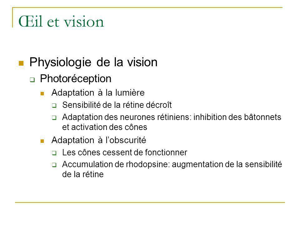 Œil et vision Physiologie de la vision Photoréception