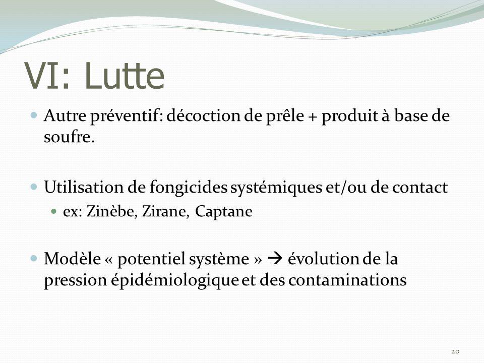 VI: Lutte Autre préventif: décoction de prêle + produit à base de soufre. Utilisation de fongicides systémiques et/ou de contact.